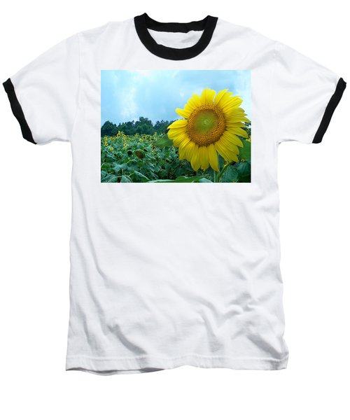 Sunflower Field Of Yellow Sunflowers By Jan Marvin Studios  Baseball T-Shirt