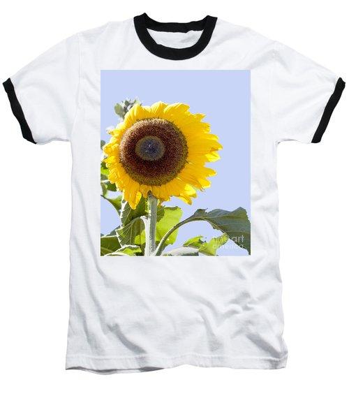 Sunflower In The Blue Sky Baseball T-Shirt by David Millenheft