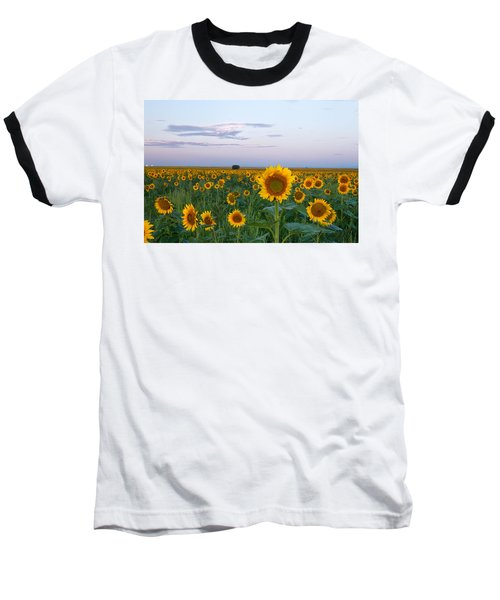 Sunflowers At Sunrise Baseball T-Shirt by Ronda Kimbrow