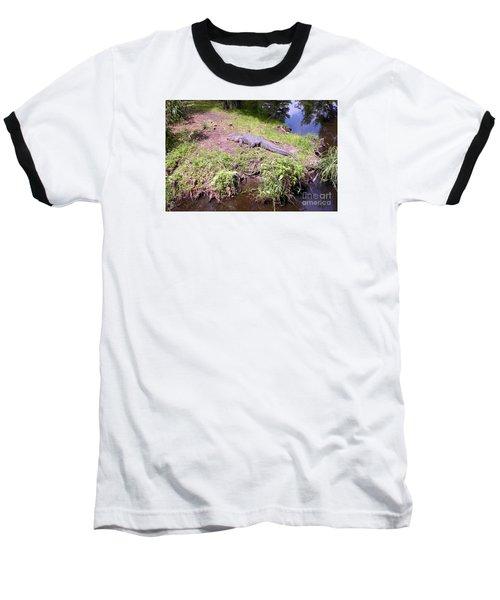 Baseball T-Shirt featuring the photograph Sunny Gator  by Joseph Baril