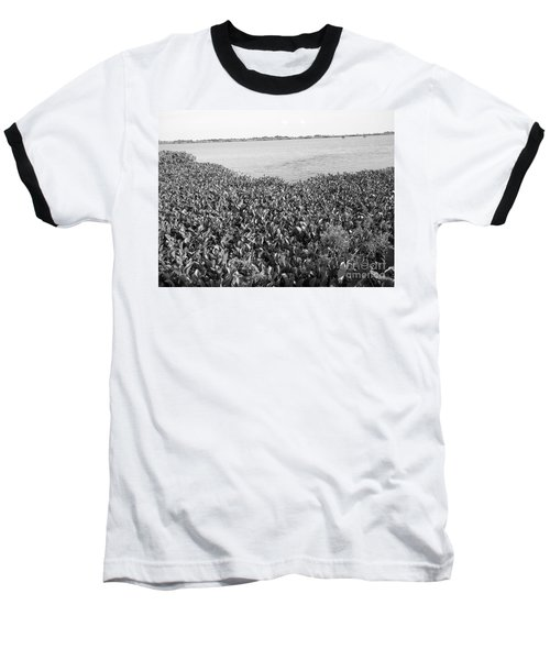 Baseball T-Shirt featuring the photograph Swamp Hyacinths Water Lillies Black And White by Joseph Baril