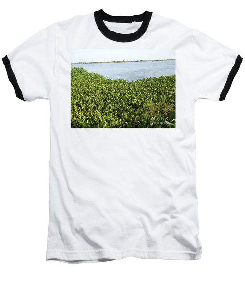 Swamp Hyacinths Water Lillies Baseball T-Shirt