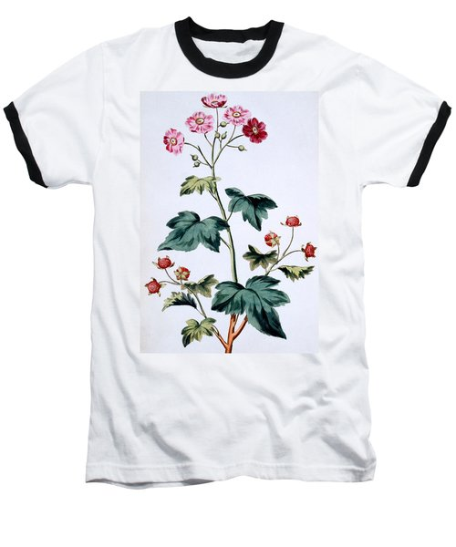 Sweet Canada Raspberry Baseball T-Shirt