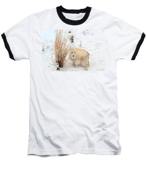 Sweet Little One Baseball T-Shirt
