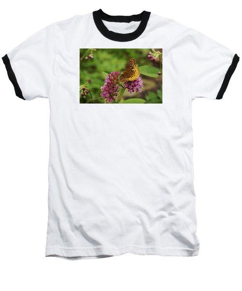 Sweet Nectar - Butterfly On Milkweed Art Print Baseball T-Shirt by Jane Eleanor Nicholas