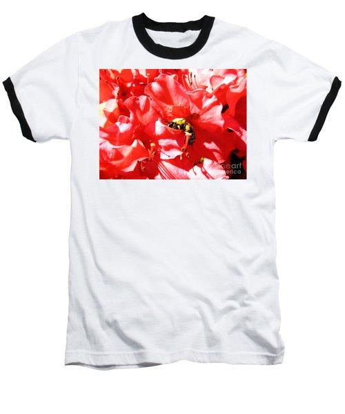 Sweet Surrender Baseball T-Shirt