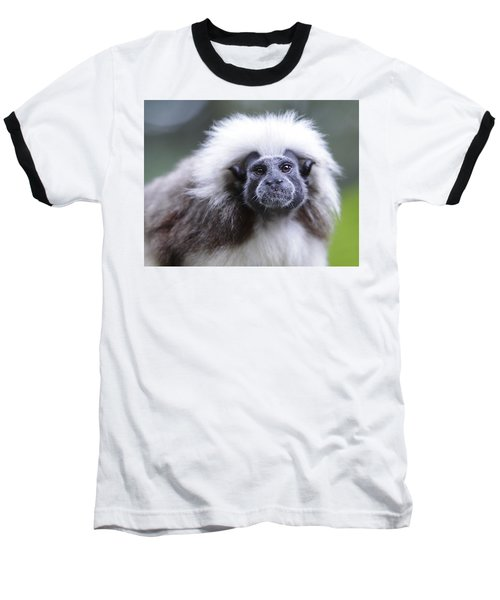 Baseball T-Shirt featuring the photograph Tamarins Face by Shoal Hollingsworth