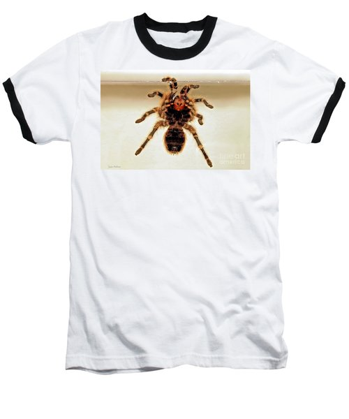 Baseball T-Shirt featuring the photograph Tarantula Hanging On Glass by Susan Wiedmann