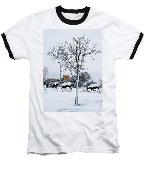Baseball T-Shirt featuring the photograph Heritage Grounds by Mae Wertz