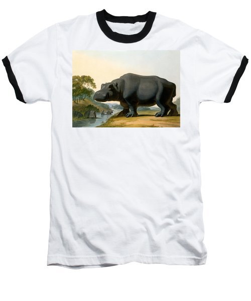 The Hippopotamus, 1804 Baseball T-Shirt by Samuel Daniell