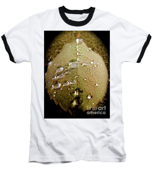 The Leaf After Rain Baseball T-Shirt by CML Brown