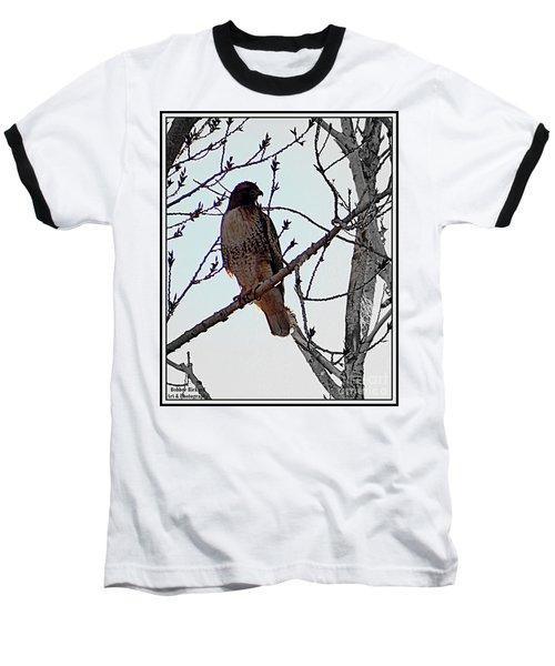 The Majestic Hawk Baseball T-Shirt