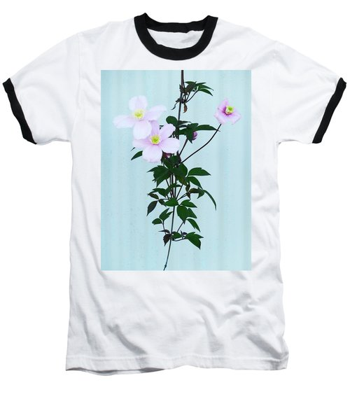 The Pink Clematis Baseball T-Shirt by Steve Taylor