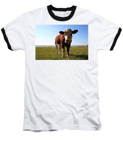 This Is My Grass Baseball T-Shirt