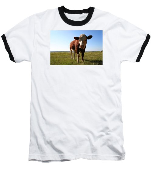 This Is My Grass Baseball T-Shirt