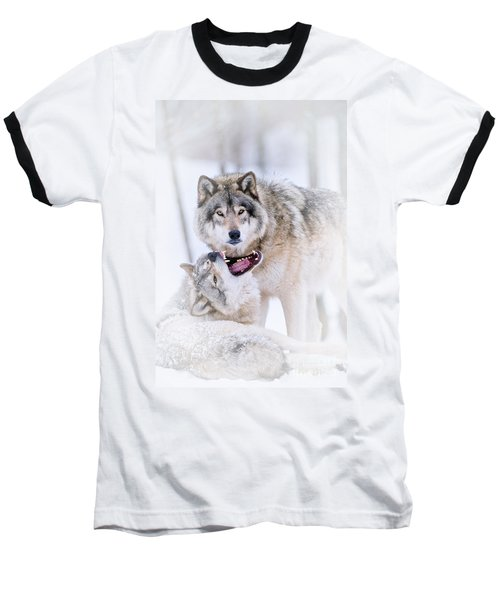 Timber Wolf Pictures 56 Baseball T-Shirt