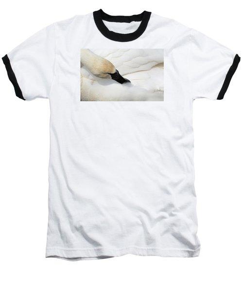 Trumpeter Swan Baseball T-Shirt