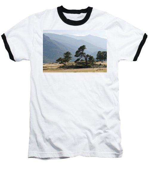 Twisted Pines Baseball T-Shirt