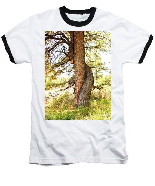 Two Pines Intertwined  Baseball T-Shirt