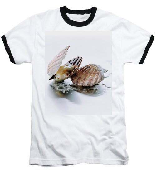 Two Scallops Baseball T-Shirt