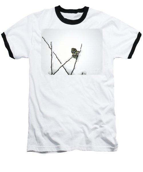 Two Sparrows Baseball T-Shirt