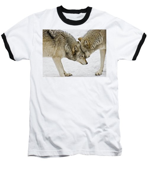 Two Wolves In  A Staredown Baseball T-Shirt by Gary Slawsky