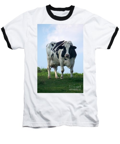 Vermont Dairy Cow Baseball T-Shirt by Eunice Miller