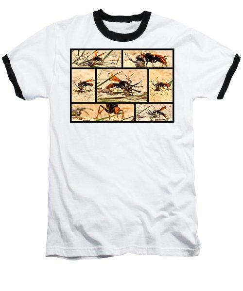 Baseball T-Shirt featuring the photograph Wasp And His Kill by Miroslava Jurcik