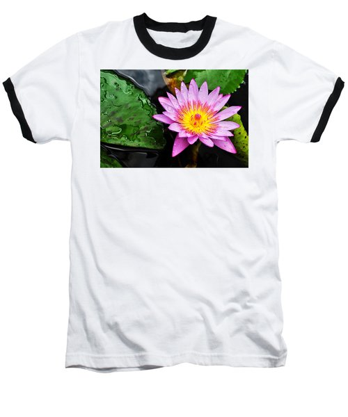 Water Lily Baseball T-Shirt by Denise Bird