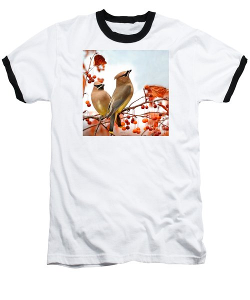 Beautiful Waxwing  Baseball T-Shirt
