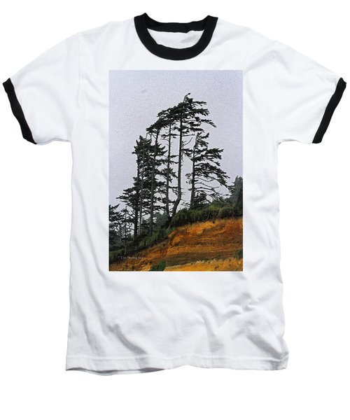 Weathered Fir Tree Above The Ocean Baseball T-Shirt by Tom Janca