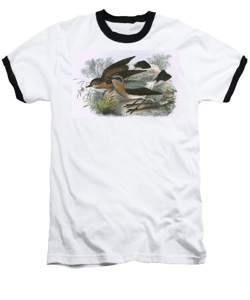 Wheatear Baseball T-Shirt by English School