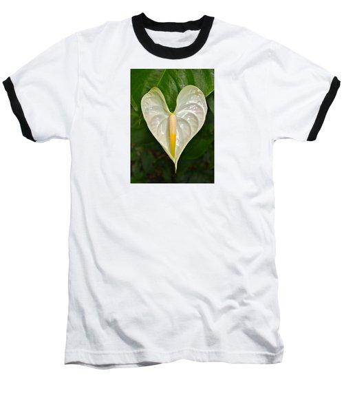 White Anthurium Heart Baseball T-Shirt by Venetia Featherstone-Witty