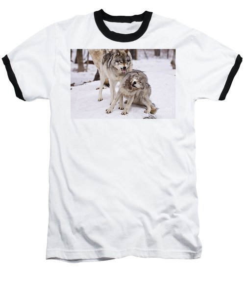 Baseball T-Shirt featuring the photograph Who's The Boss by Wolves Only