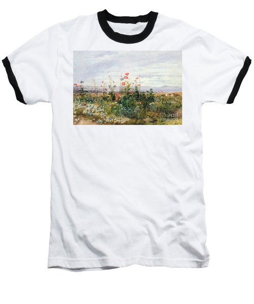 Wildflowers With A View Of Dublin Dunleary Baseball T-Shirt