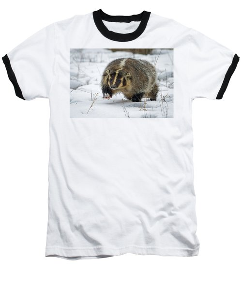 Baseball T-Shirt featuring the photograph Winter Badger by Jack Bell
