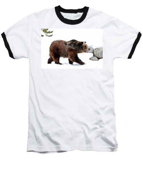 Winter Bear Walk Baseball T-Shirt