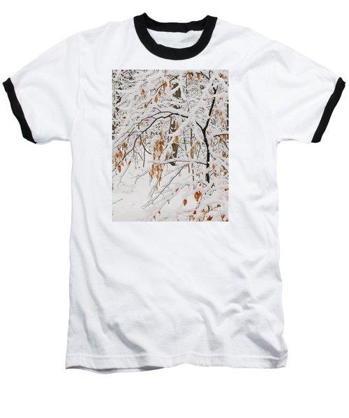 Winter Branches Baseball T-Shirt by Ann Horn