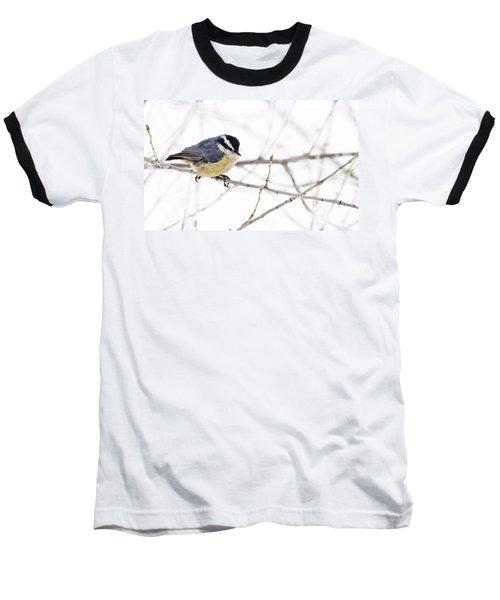 Winter Day Baseball T-Shirt