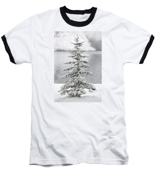 Winter Decor Baseball T-Shirt by Diane Bohna