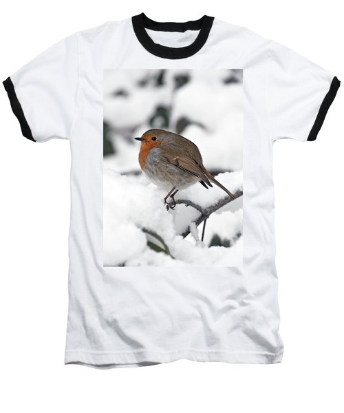 Winter Robin Baseball T-Shirt
