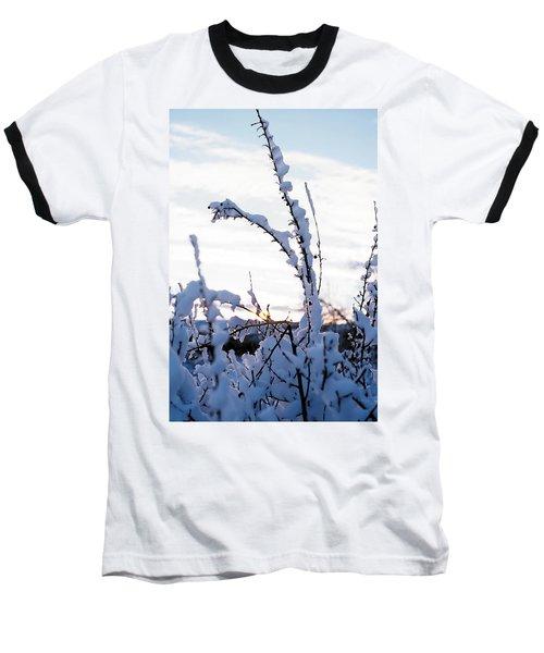 Winter Baseball T-Shirt by Terry Reynoldson