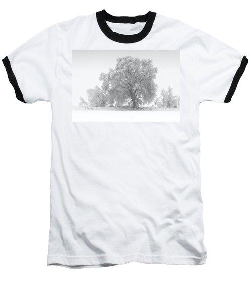 Winter Tree Baseball T-Shirt