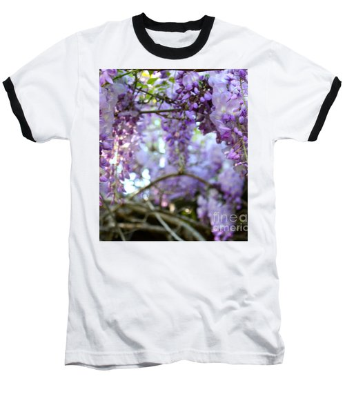 Wisteria Dream Baseball T-Shirt by Cathy Dee Janes