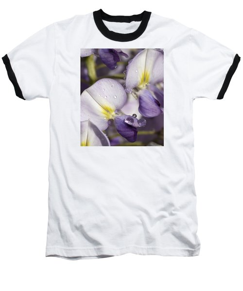 Wisteria Baseball T-Shirt by Richard Thomas