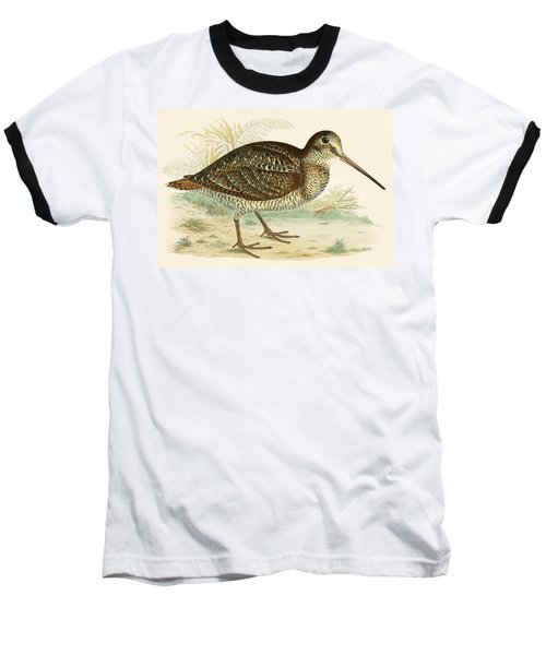 Woodcock Baseball T-Shirt by Beverley R Morris