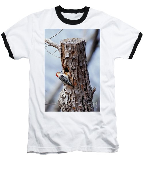 Woodpecker And Starling Fight For Nest Baseball T-Shirt