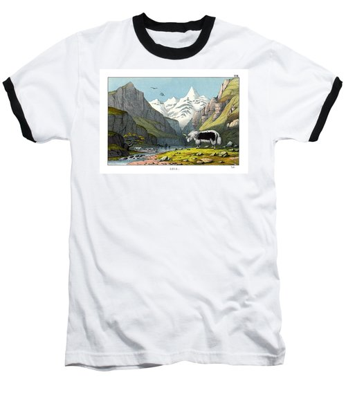Yak Baseball T-Shirt by Splendid Art Prints