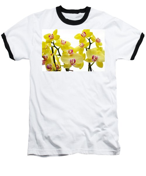 Yellow Beauties Baseball T-Shirt