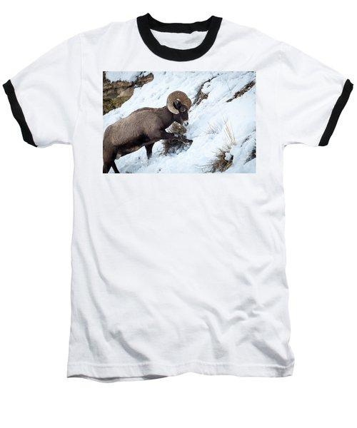 Yellowstone Bighorn Baseball T-Shirt